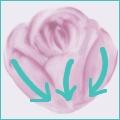 Variante rosellina-step 5